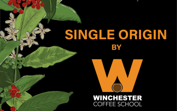 Single Origin of the Month